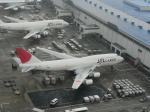 さくら13さんが、成田国際空港で撮影した日本航空 747-446(BCF)の航空フォト(写真)