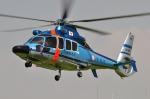 へりさんが、東京ヘリポートで撮影した警視庁 EC155B1の航空フォト(写真)