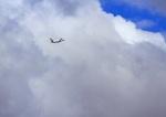 ランウェイさんが、羽田空港で撮影したスカイマーク 737-8HXの航空フォト(写真)