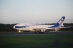 raiing727さんが、成田国際空港で撮影した日本貨物航空 747-481F/SCDの航空フォト(写真)