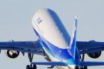 ずい (Ueda)さんが、伊丹空港で撮影した全日空 767-381の航空フォト(写真)