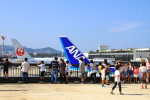 yuuka no kazeさんが、伊丹空港で撮影した全日空 767-381の航空フォト(写真)
