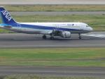 ポッキーさんが、羽田空港で撮影した全日空 A320-211の航空フォト(写真)