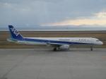 けろんさんが、山口宇部空港で撮影した全日空 A321-131の航空フォト(写真)