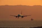 おぺちゃんさんが、神戸空港で撮影したスカイマーク 737-8HXの航空フォト(写真)