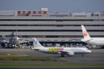 さんでんさんが、羽田空港で撮影したバニラエア A320-211の航空フォト(写真)
