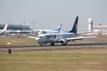 tri-heartさんが、新千歳空港で撮影したスカイマーク 737-8HXの航空フォト(写真)