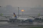 dianaさんが、羽田空港で撮影したソラシド エア 737-46Mの航空フォト(写真)