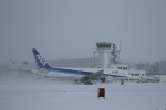 tupolevさんが、函館空港で撮影した全日空 777-281の航空フォト(写真)