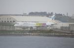アイボさんが、那覇空港で撮影したバニラエア A320-211の航空フォト(写真)