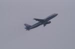 Boeing787‐8さんが、羽田空港で撮影した全日空 A320-211の航空フォト(写真)