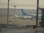 林ミラノさんが、羽田空港で撮影したバニラエア A320-211の航空フォト(写真)