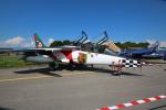 Koenig117さんが、ミリテール・ド・ペイエルヌ飛行場で撮影したポルトガル空軍 Alpha Jet Aの航空フォト(写真)