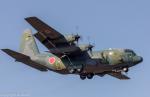 こだしさんが、茨城空港で撮影した航空自衛隊 C-130H Herculesの航空フォト(写真)