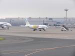 ユキオ.312さんが、羽田空港で撮影したバニラエア A320-211の航空フォト(写真)