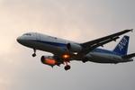 ウッディさんが、成田国際空港で撮影した全日空 A320-214の航空フォト(写真)