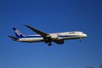 tupolevさんが、新千歳空港で撮影した全日空 787-9の航空フォト(写真)