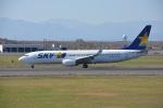 カシオペアさんが、新千歳空港で撮影したスカイマーク 737-8HXの航空フォト(写真)