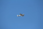 bb212さんが、中部国際空港で撮影したベルハンドクラブ XL-2の航空フォト(写真)