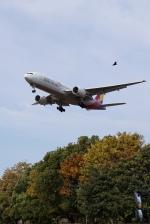 pringlesさんが、福岡空港で撮影したアシアナ航空 777-28E/ERの航空フォト(写真)