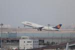 たろさんが、羽田空港で撮影したルフトハンザドイツ航空 747-830の航空フォト(写真)