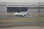 たろさんが、羽田空港で撮影した全日空 787-8 Dreamlinerの航空フォト(写真)