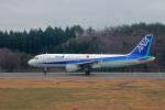 わかすぎさんが、能登空港で撮影した全日空 A320-211の航空フォト(写真)
