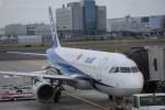 Tomochanさんが、羽田空港で撮影した全日空 A320-211の航空フォト(写真)