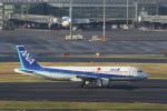 ぽんさんが、羽田空港で撮影した全日空 A320-211の航空フォト(写真)