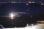 airdrugさんが、羽田空港で撮影した全日空 A320-211の航空フォト(写真)