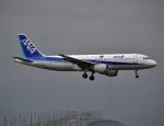 えるあ~るさんが、関西国際空港で撮影した全日空 A320-211の航空フォト(写真)