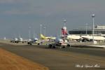 サイパンダマルコスさんが、中部国際空港で撮影した日本トランスオーシャン航空 737-446の航空フォト(写真)