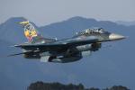 Atsugi R4さんが、新田原基地で撮影した航空自衛隊 F-2Bの航空フォト(写真)