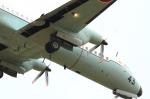 世捨て人さんが、厚木飛行場で撮影した海上自衛隊 YS-11A-404M-Aの航空フォト(写真)