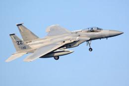 apphgさんが、嘉手納飛行場で撮影したアメリカ空軍 F-15 Eagleの航空フォト(写真)