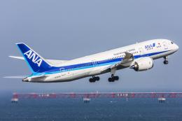 Jeongさんが、羽田空港で撮影した全日空 787-881の航空フォト(写真)