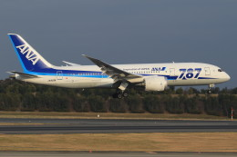 Espace77さんが、成田国際空港で撮影した全日空 787-881の航空フォト(写真)