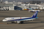 ケロたんさんが、中部国際空港で撮影した全日空 A320-211の航空フォト(写真)