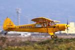 多楽さんが、富士川滑空場で撮影した静岡県航空協会 PA-18-150 Super Cubの航空フォト(写真)
