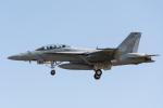 TBさんが、厚木飛行場で撮影したアメリカ海軍 F/A-18F Super Hornetの航空フォト(写真)
