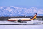 ATOMさんが、帯広空港で撮影した日本エアシステム A300B4-2Cの航空フォト(写真)