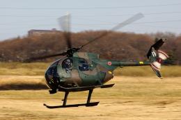 ShadowHawksさんが、習志野演習場で撮影した陸上自衛隊 OH-6Dの航空フォト(写真)