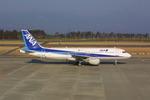 meijeanさんが、鹿児島空港で撮影した全日空 A320-211の航空フォト(写真)