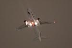 いたみんさんが、伊丹空港で撮影した全日空 A320-211の航空フォト(写真)