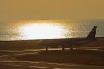 kiyochanさんが、大分空港で撮影した全日空 737-281の航空フォト(写真)