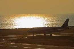 kiyochanさんが、大分空港で撮影した全日空 A320-211の航空フォト(写真)