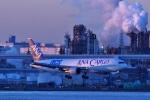 comさんが、羽田空港で撮影した全日空 767-381/ER(BCF)の航空フォト(写真)