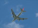 コージーさんが、成田国際空港で撮影した日本航空 747-446F/SCDの航空フォト(写真)