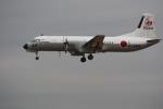 pirotan141さんが、厚木飛行場で撮影した海上自衛隊 YS-11A-325M-Aの航空フォト(写真)