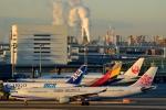 miyapppさんが、羽田空港で撮影したチャイナエアライン A330-302の航空フォト(写真)